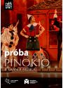 Plakat - FRAGMENT PRÓBY -